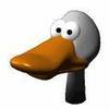 the_duck